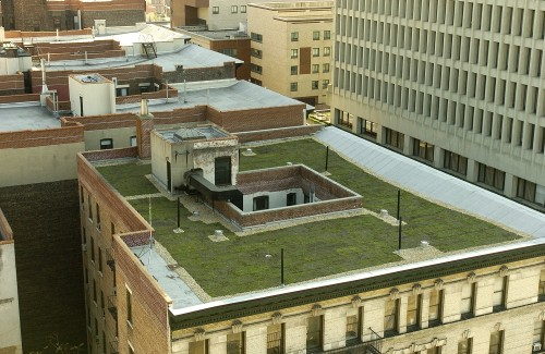 What S Next To Go Green Columbia S Roofs December 4